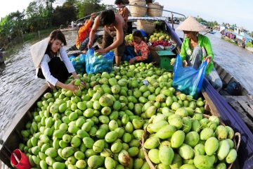 Ho Chi Minh City – Cai Be Floating Market – Tan Phong Island 1 Day