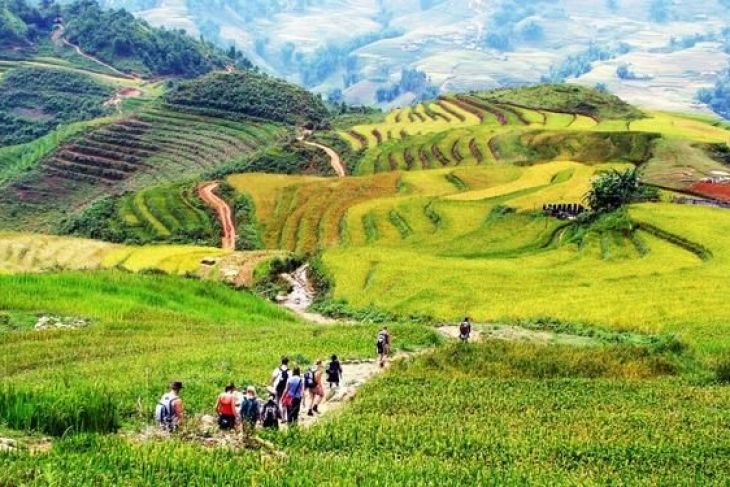Discovery The Unique Culture Of The Red Dao In Sapa, Vietnam